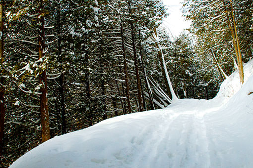 Randonnée d'hiver dans la région de Coaticook